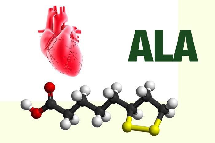 """Alpha lipoic acid – chất chống oxy hóa """"siêu đẳng"""" cho người bệnh tim"""